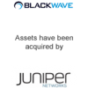 Blackwave assets have been acquired by Juniper Networks